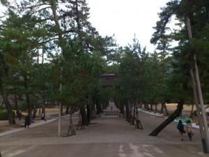 松並木の参道