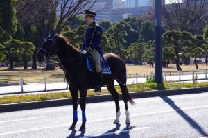 一般参賀 皇宮警察騎馬隊