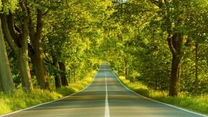 どんなに曲がりくねった道でも、振り返れば成功に向かうまっすぐな道。だいたい人の道っていうのは、一生懸命やってれば、そうそう外れることはないな。だから安心していいよ。【斎藤一人】
